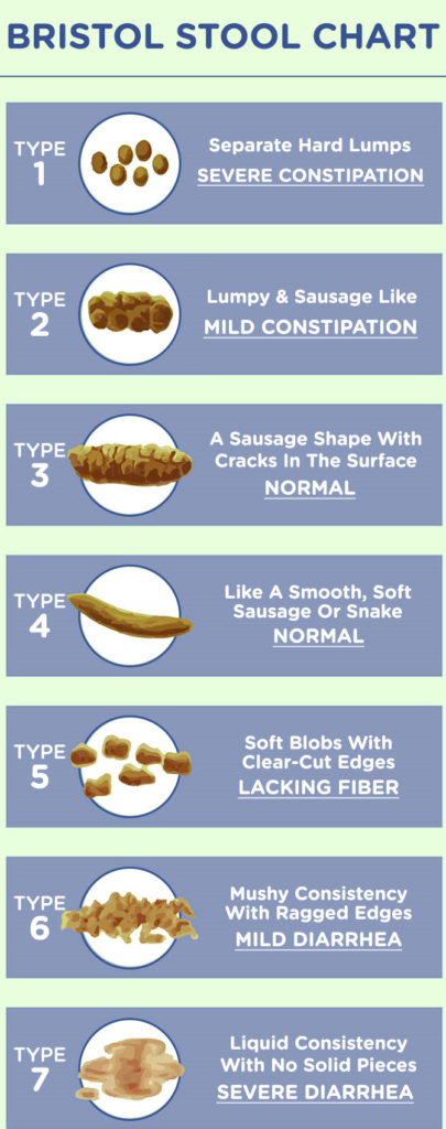 poop shape and color chart bristol stool chart