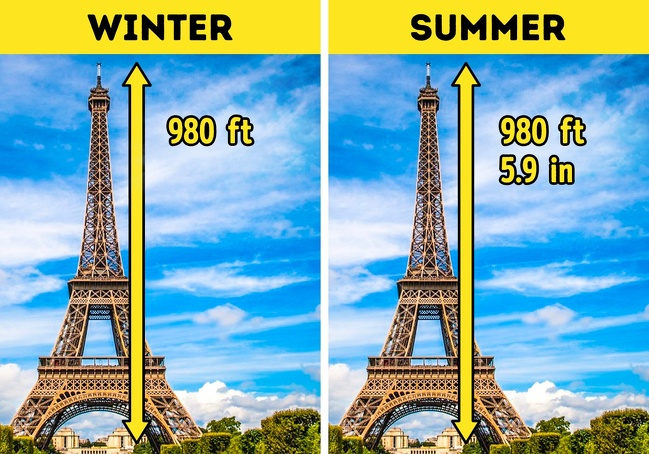 17 Incredible Scientific Facts That Seem Too Crazy to Be True
