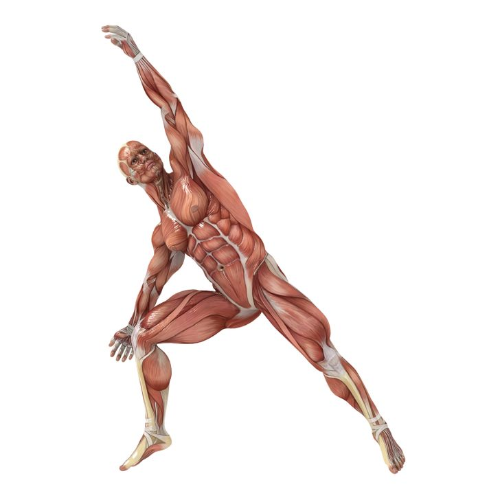 8 Best Stretching Exercises for Better Flexibility