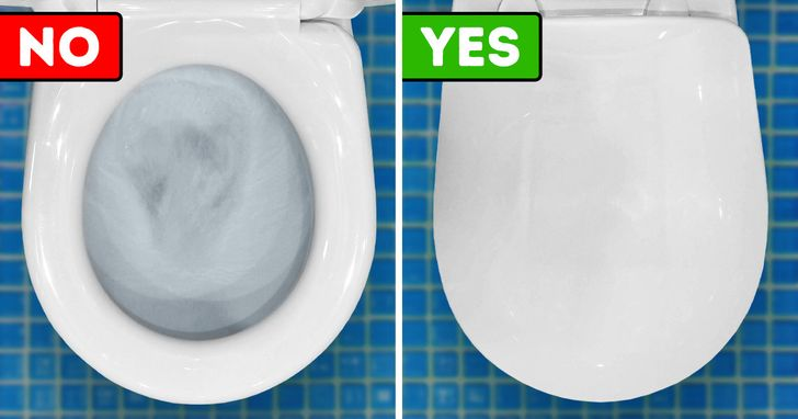 Why We Should Always Put the Toilet Lid Down When We Flush