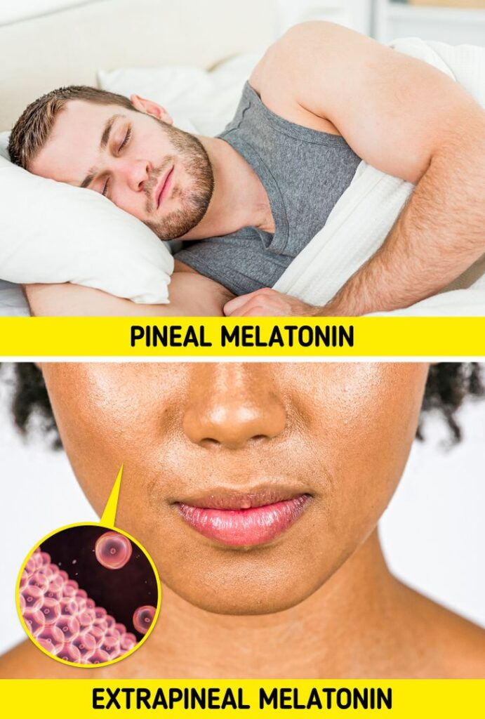 5 Reasons Why It's Good to Take Melatonin and How to Do It