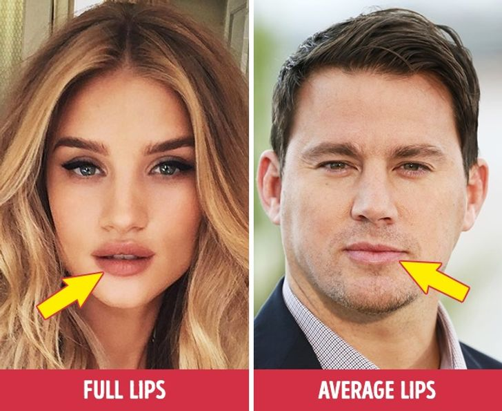 12 Facial Features and Personality Traits That Everybody Loves